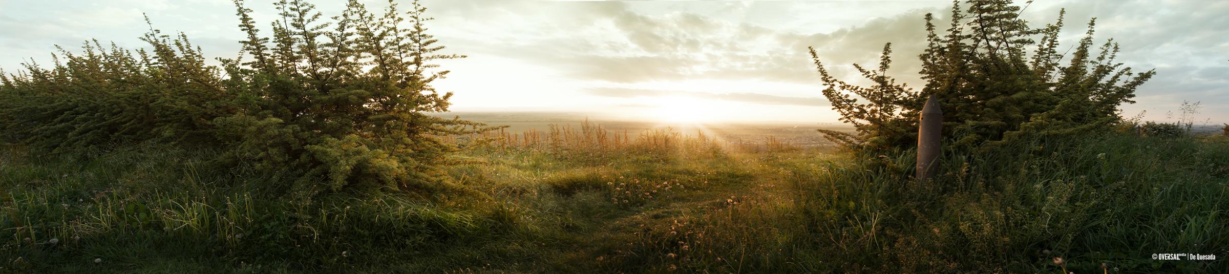Sun shining through green bushes - Sunは緑の茂みを通して輝きます SKU: la-0010c